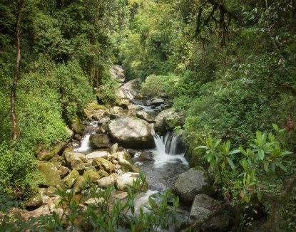 Sirikhola River
